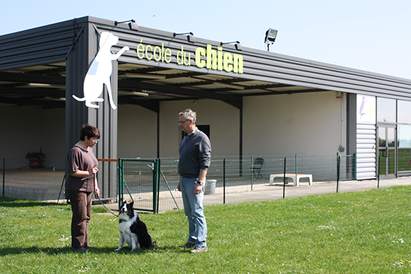 école du chien