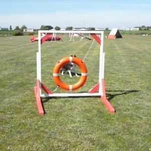 pneu agility