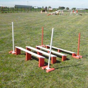 saut longueur agility
